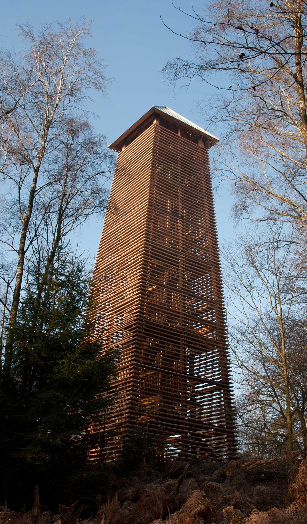 Houten uitkijktoren in het Bergherbos